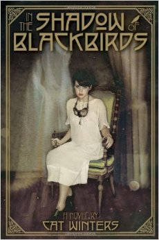 In the shadows of blackbirds